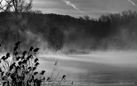 nebbia.