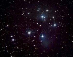 stelle (1)